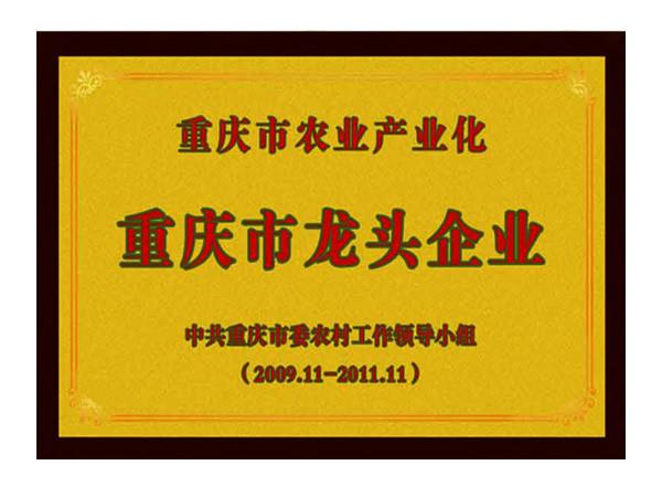 重庆市龙头企业
